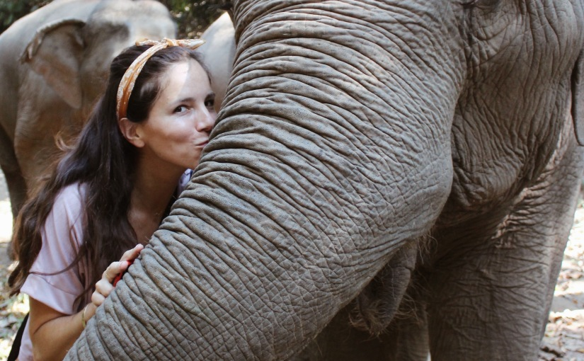 Elephant Kisses, not Elephant Rides.